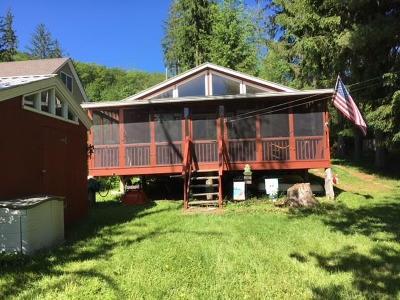 Roscoe NY Single Family Home For Sale: $139,000