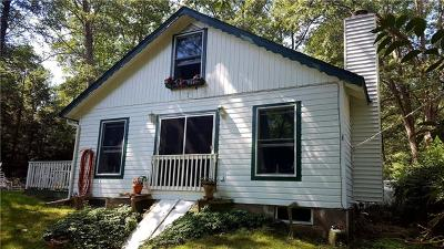 Single Family Home For Sale: 80 Minisink