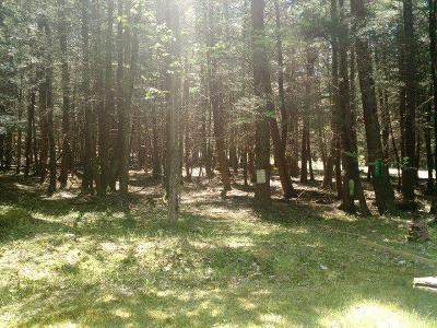 Narrowsburg Residential Lots & Land For Sale: Lot 34 Bear Run