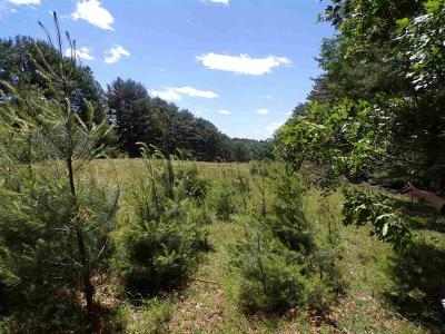 Sullivan County Residential Lots & Land For Sale: Mud Pond Road