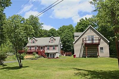 Livingston Manor Single Family Home For Sale: 38 Devoe