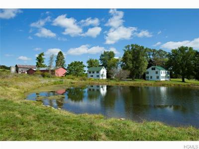 Dutchess County Single Family Home For Sale: 371 Halls Corners Road