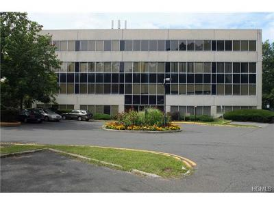 Pomona Commercial For Sale: 978 Route 45 #201