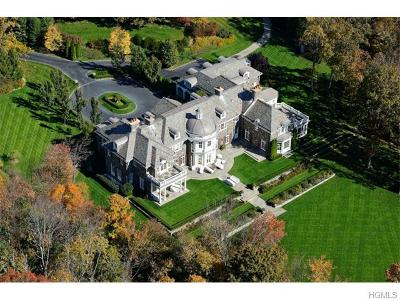 Westchester County Single Family Home For Sale: 48 Haights Cross Road