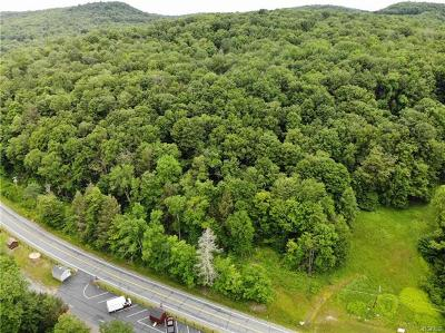 Sullivan County Residential Lots & Land For Sale: (Lot 2) State Route 55