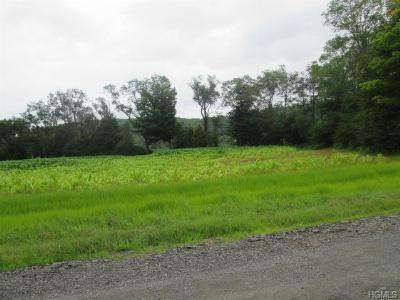 Callicoon, Callicoon Center Residential Lots & Land For Sale: Welsh Road