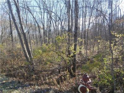 Fishkill Residential Lots & Land For Sale: 1784 Route 52