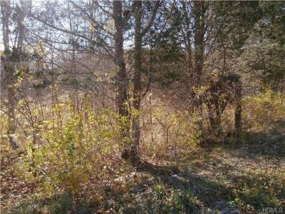 Fishkill Residential Lots & Land For Sale: Route 52 (114.34 Acres) Road
