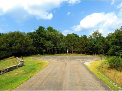 Chester Residential Lots & Land For Sale: 29 Silvertail Road