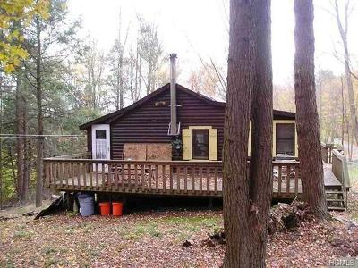 Sullivan County Single Family Home For Sale: 2 Tusten Place