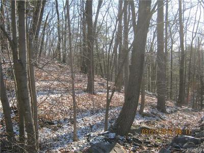 Greenwood Lake Residential Lots & Land For Sale: 1200 State Route 17a