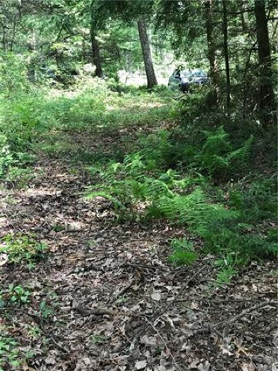 Glen Spey Residential Lots & Land For Sale: Lebanon Road