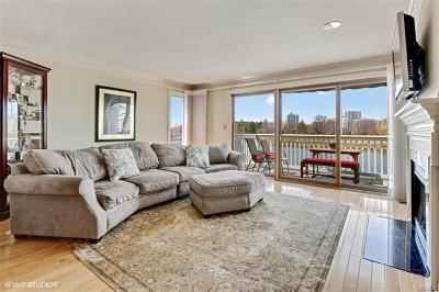 Connecticut Condo/Townhouse For Sale: 123 Harbor Drive #406