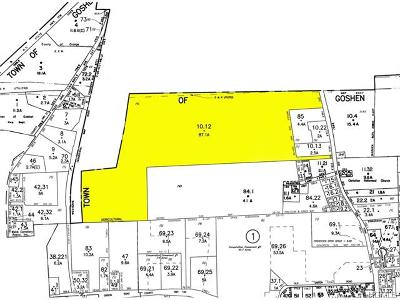 Goshen Commercial For Sale: 2 State Route 17a