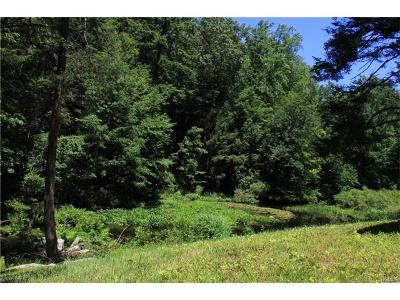 Pound Ridge Residential Lots & Land For Sale: Lower Trinity Pass Road