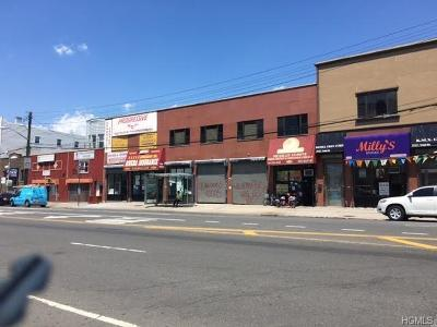 Commercial For Sale: 2415 East Tremont Avenue