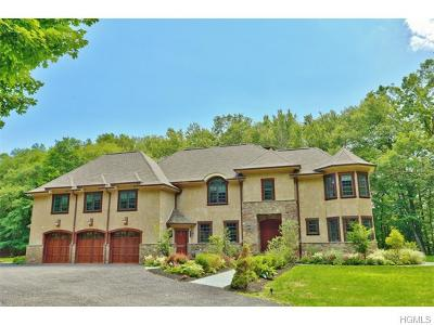 Yorktown Heights Single Family Home For Sale: 850 Saw Mill River Road