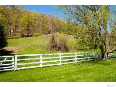 Pleasant Valley Residential Lots & Land For Sale: 305 Skidmore Road