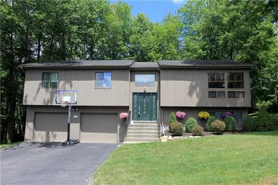Westchester County Single Family Home For Sale: 73 Mitchell Road