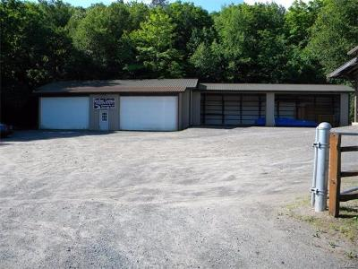 Commercial For Sale: 7862 State Route 55