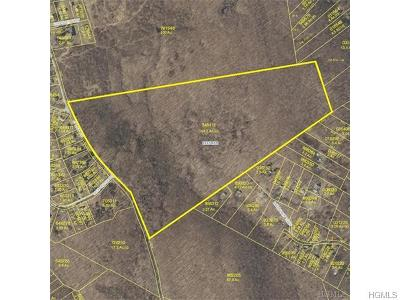 Hopewell Junction Residential Lots & Land For Sale: 1 Baker Road