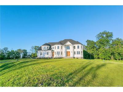 Blauvelt Single Family Home For Sale: 72 Schuyler Road