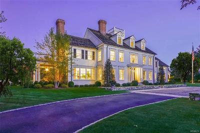 Goldens Bridge Single Family Home For Sale: 3 Falcon Ridge Drive