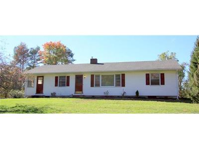 Montgomery Single Family Home For Sale: 2941 Albany Post Road