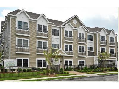 White Plains Condo/Townhouse For Sale: 5 Minerva Place #3B