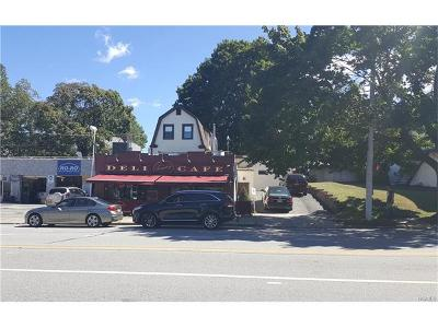 Commercial For Sale: 586 North Broadway