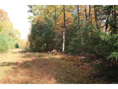 Glen Spey Residential Lots & Land For Sale: Rio Dam Road