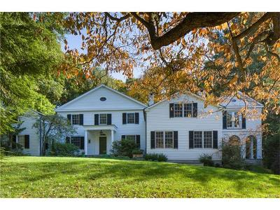 Dobbs Ferry Single Family Home For Sale: 164 Washington Avenue