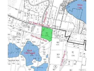 Bethel Residential Lots & Land For Sale: Nys Hwy 17b