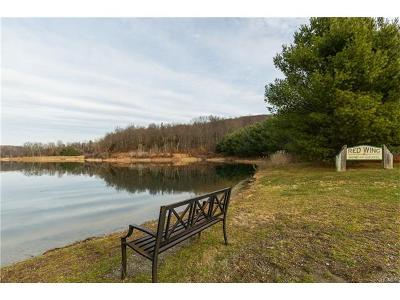 Dutchess County Residential Lots & Land For Sale: Route 82