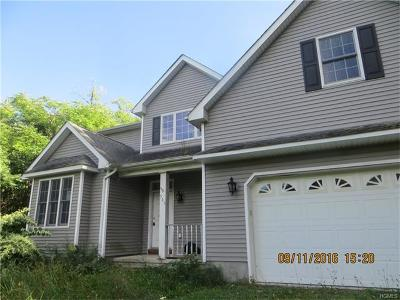 Highland Mills Single Family Home For Sale: 565 Angola Road