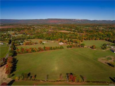 Orange County, Sullivan County, Ulster County Residential Lots & Land For Sale: 814 Sand Hill (Upper Farm) Road