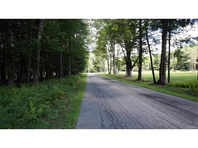 Bethel Residential Lots & Land For Sale: 10.13 Perry Road Tr 72