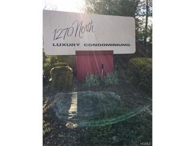 New Rochelle Condo/Townhouse For Sale: 1270 North Avenue #4C