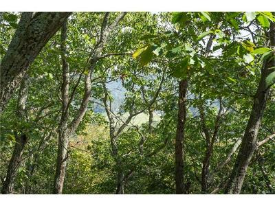 Dover Plains Residential Lots & Land For Sale: Cart Road