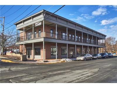 Goshen Commercial For Sale: 117 Grand Unit 1 Street #1