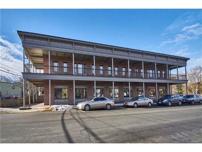 Goshen Commercial For Sale: 117 Grand Unit #3 Street #3
