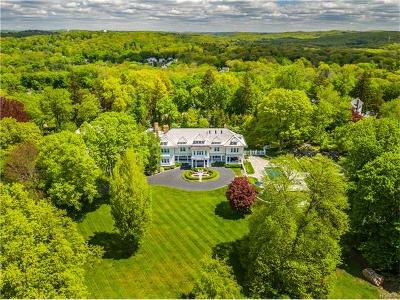 Briarcliff Manor Single Family Home For Sale: 224 Central Drive