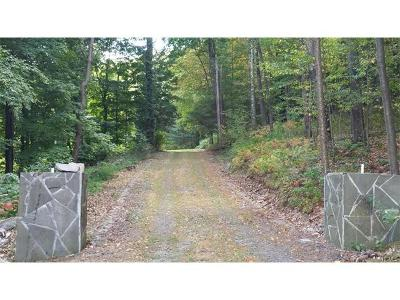 Dover Plains Residential Lots & Land For Sale: 290 Hammond Hill Road