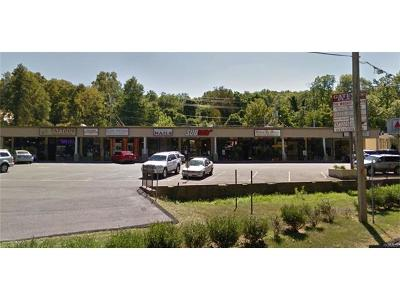Valley Cottage Commercial For Sale: 48 Route 303