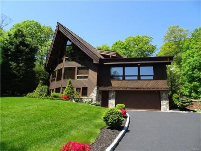 Putnam Valley Single Family Home For Sale: 145 Lake Shore Road