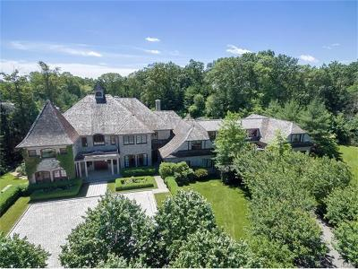 Armonk Single Family Home For Sale: 9 Terrace Circle