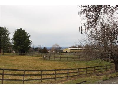 Goshen Single Family Home For Sale: 393 Mt Eve Road