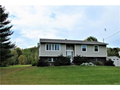 Dover Plains Single Family Home For Sale: 104 Craig