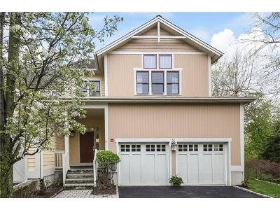 Dobbs Ferry Single Family Home For Sale: 37 Landing Drive