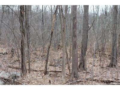 Stormville Residential Lots & Land For Sale: 14 Mountain Top Road